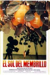 El Sol del Membrillo - CC Mario Monreal - Sagunt